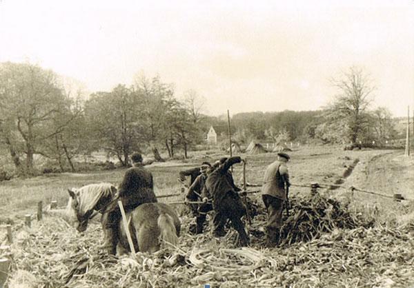 Landarbeitergewerkschaft